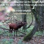 DeerCounttalkthumb